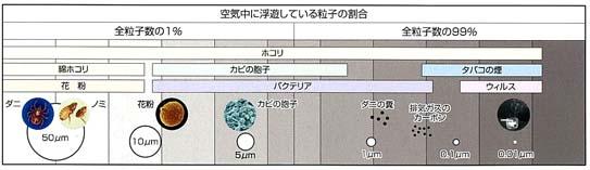 kikubari-1.jpg